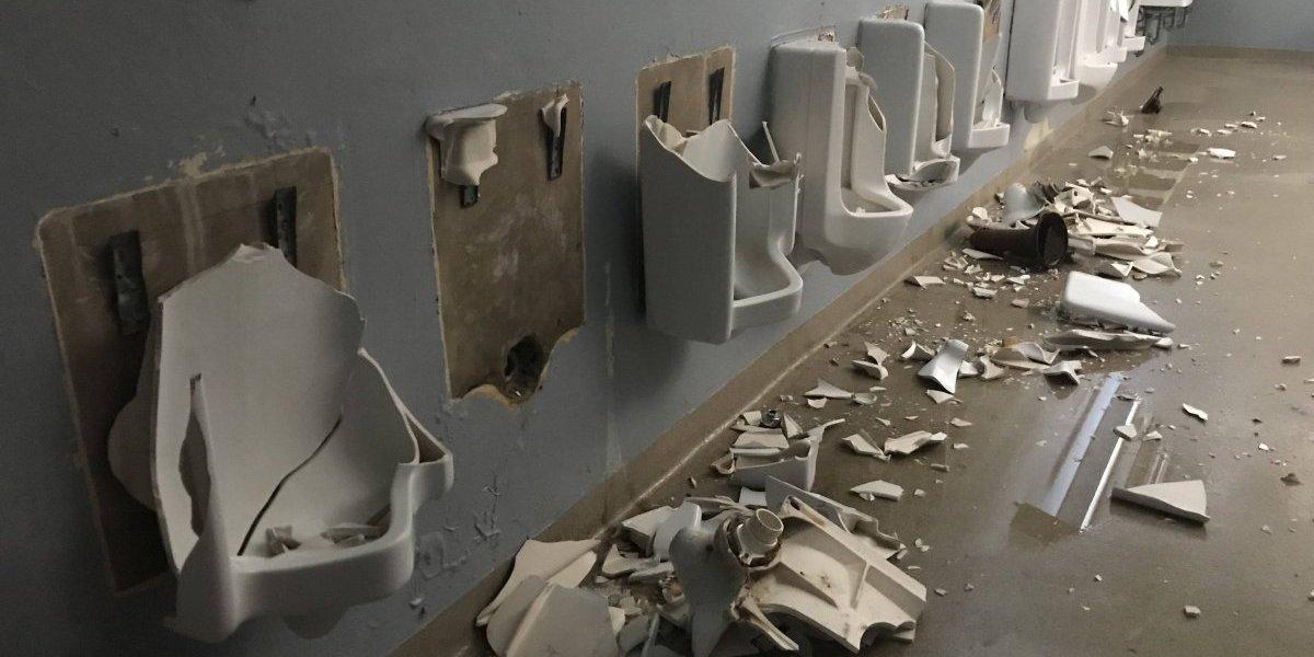Criollos de Caguas denuncian vandalismo en el Solá Morales