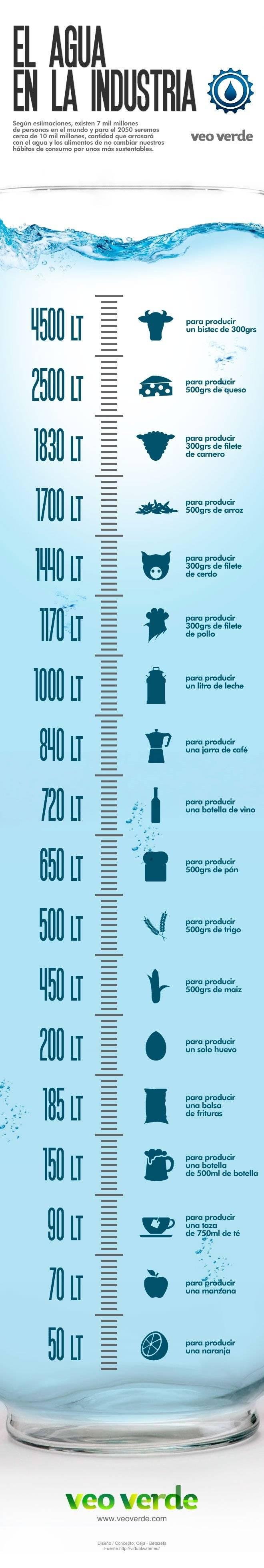 infografiaaguaveoverdev21.jpg