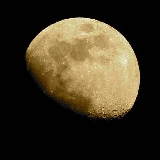 luna550x550.jpg