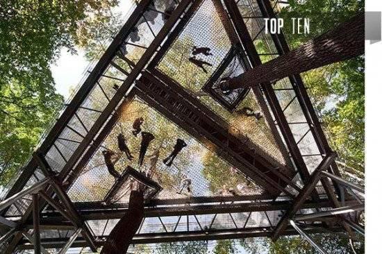 treehousesintro550x366.jpg