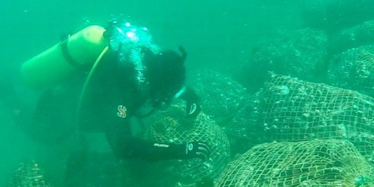 Pescadores afectados por Marea Roja en Chiloé demandan aumento del Bono Solidario