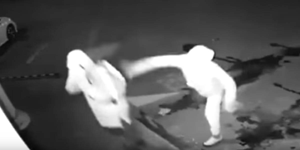 Tentativa de furto dá errado e ladrão acaba 'apagando' comparsa com pedrada