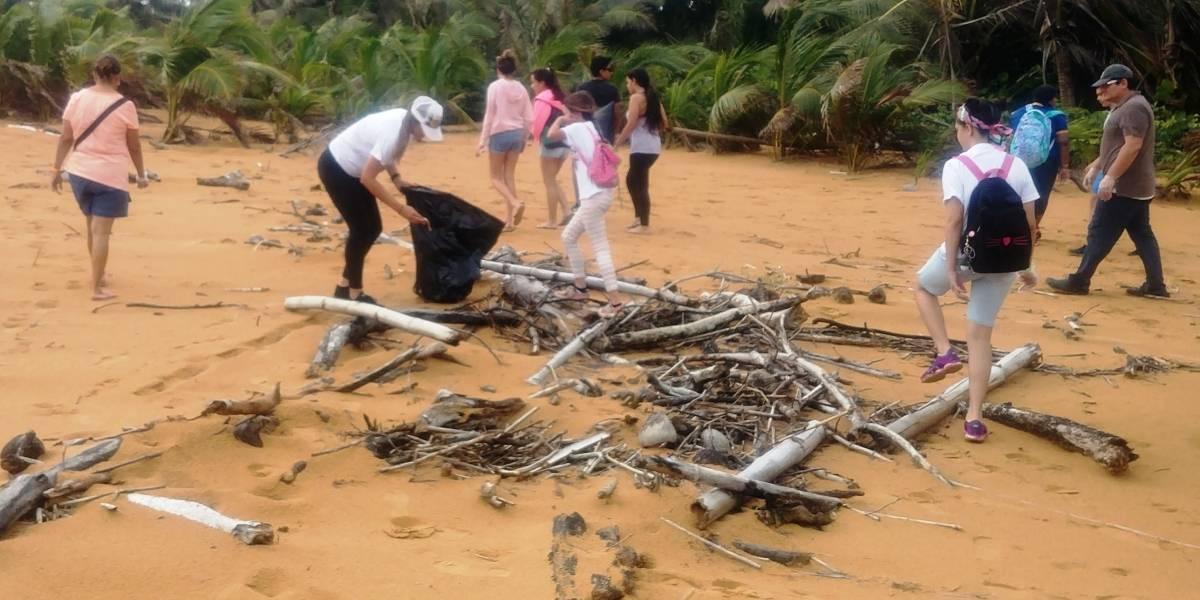 Preparan las playas del Corredor Ecológico del Noreste para recibir al tinglar