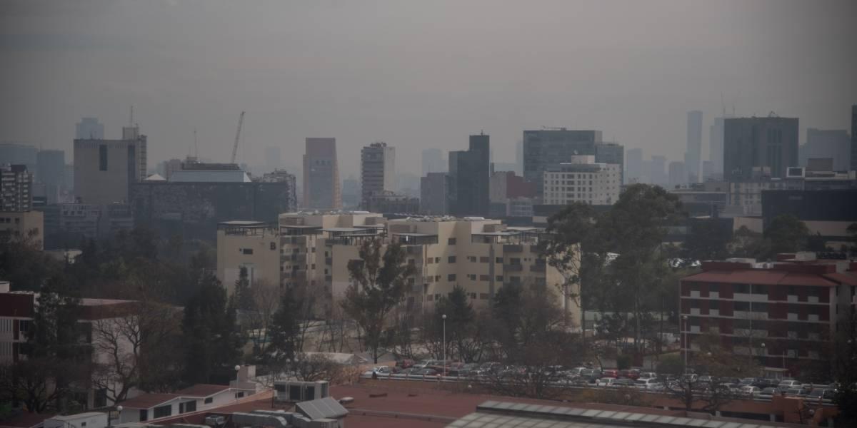Programa Hoy No Circula ha disminuido contaminación en el Valle de México: CAMe