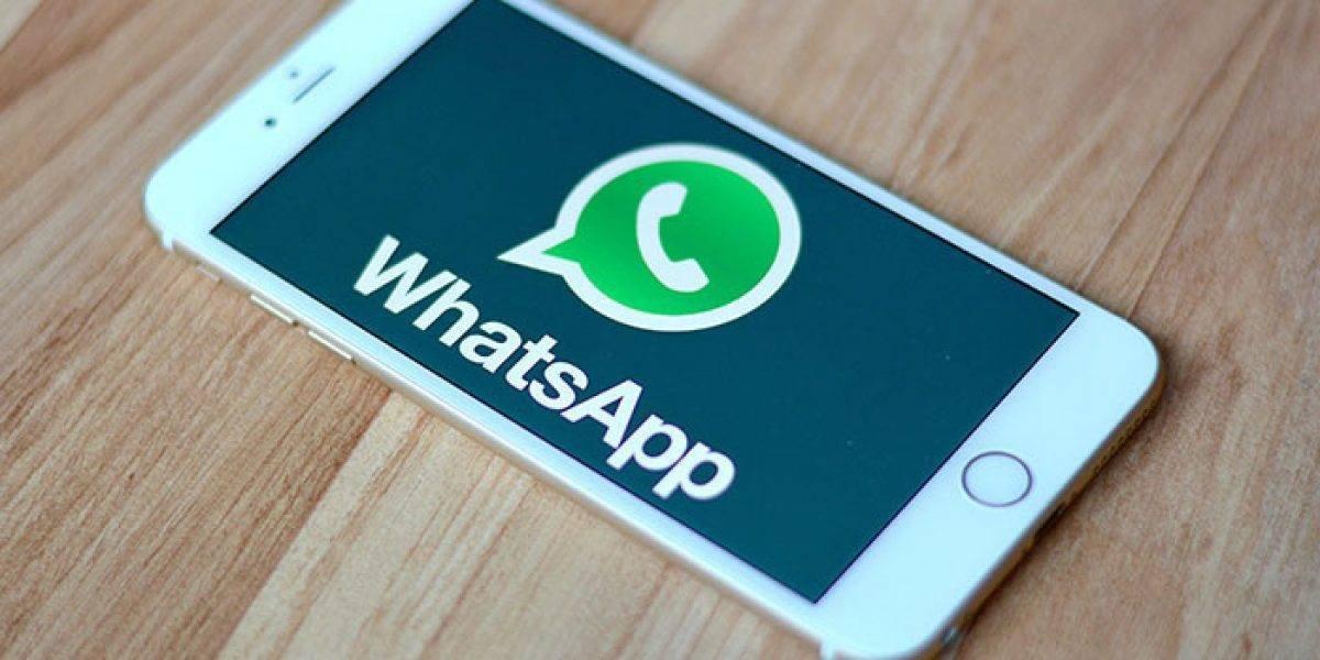 WhatsApp: ¿Cómo ver los mensajes borrados?
