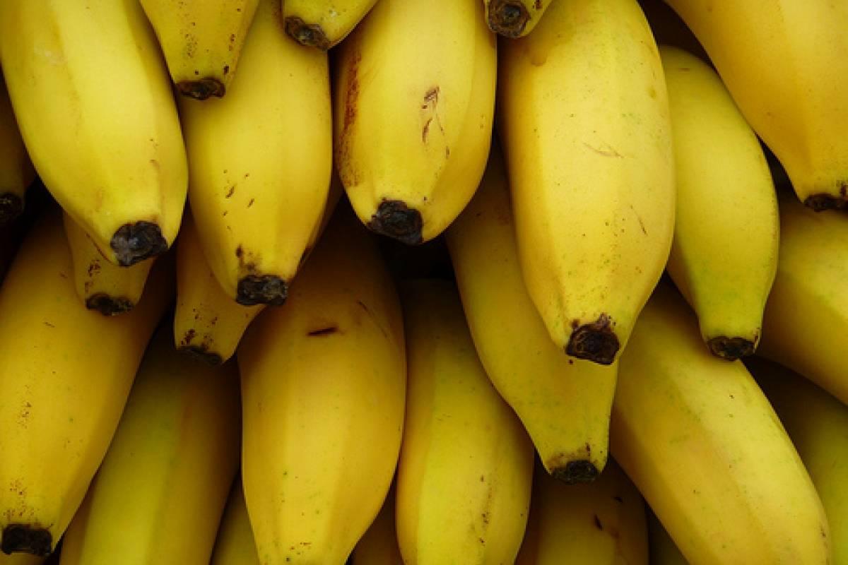 Banano Banana Plátano Cambur Topocho O Guineo Veoverde Nueva