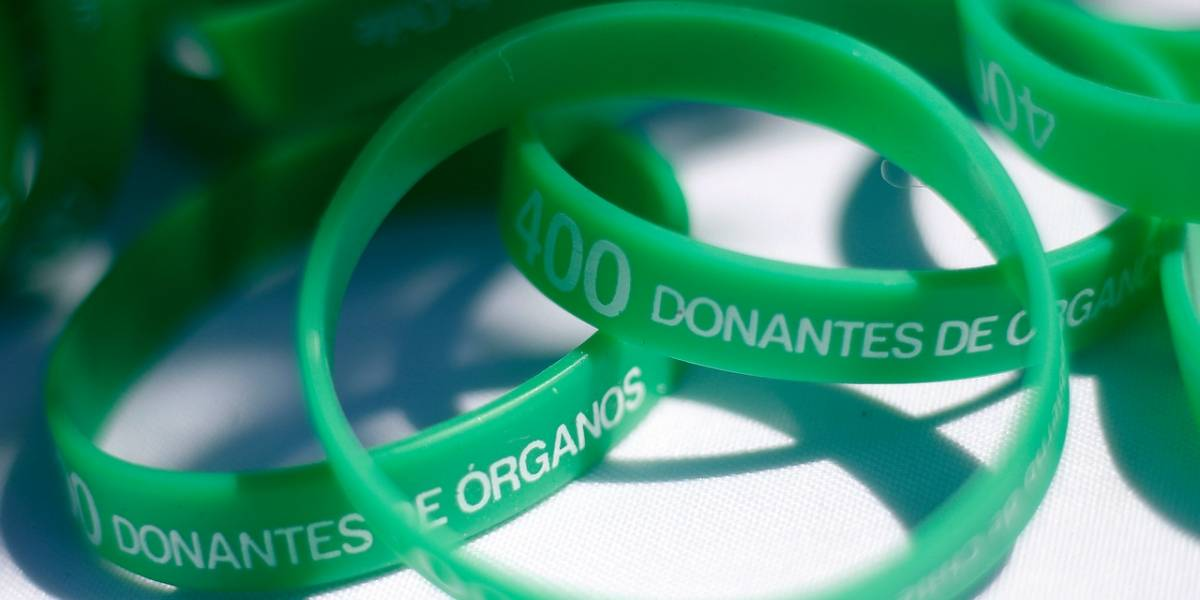 Donación de órganos: Lo parecido de las leyes de Holanda y Chile
