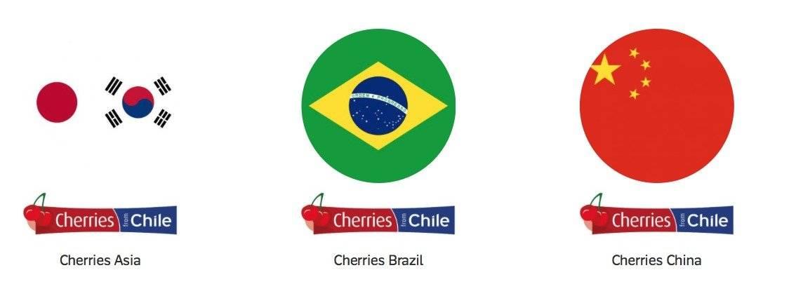Frutas chilenas para la exportación