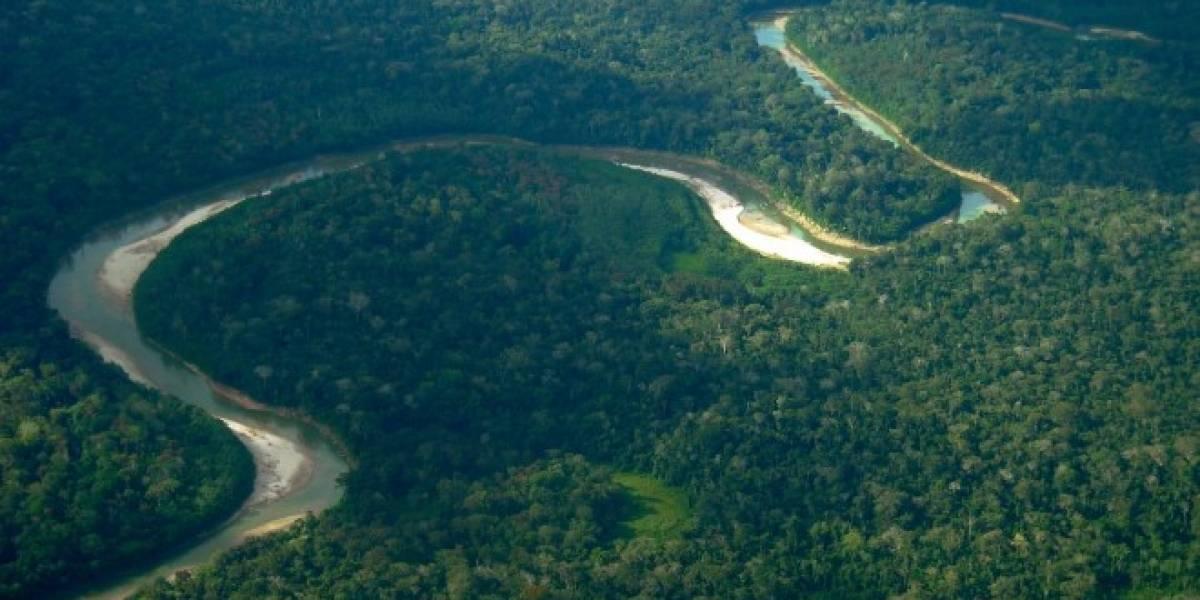AMAZONAS cover image