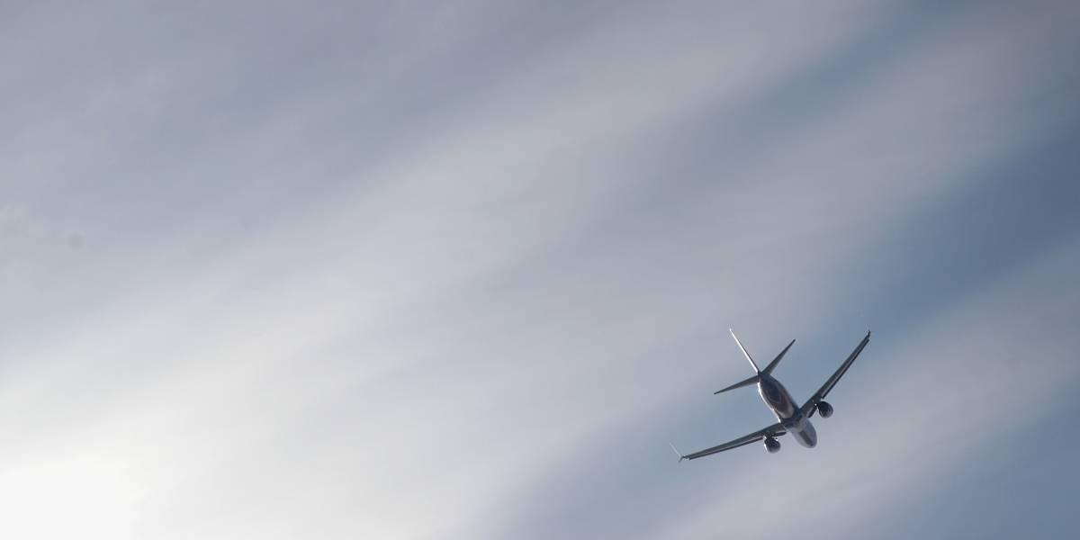 Cão morre após viajar em compartimento de avião