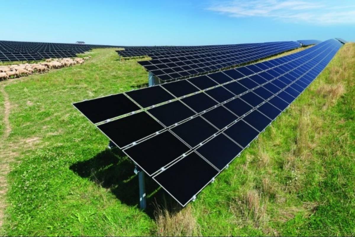 Qu 233 Es Una Granja Solar Veoverde Nueva Mujer