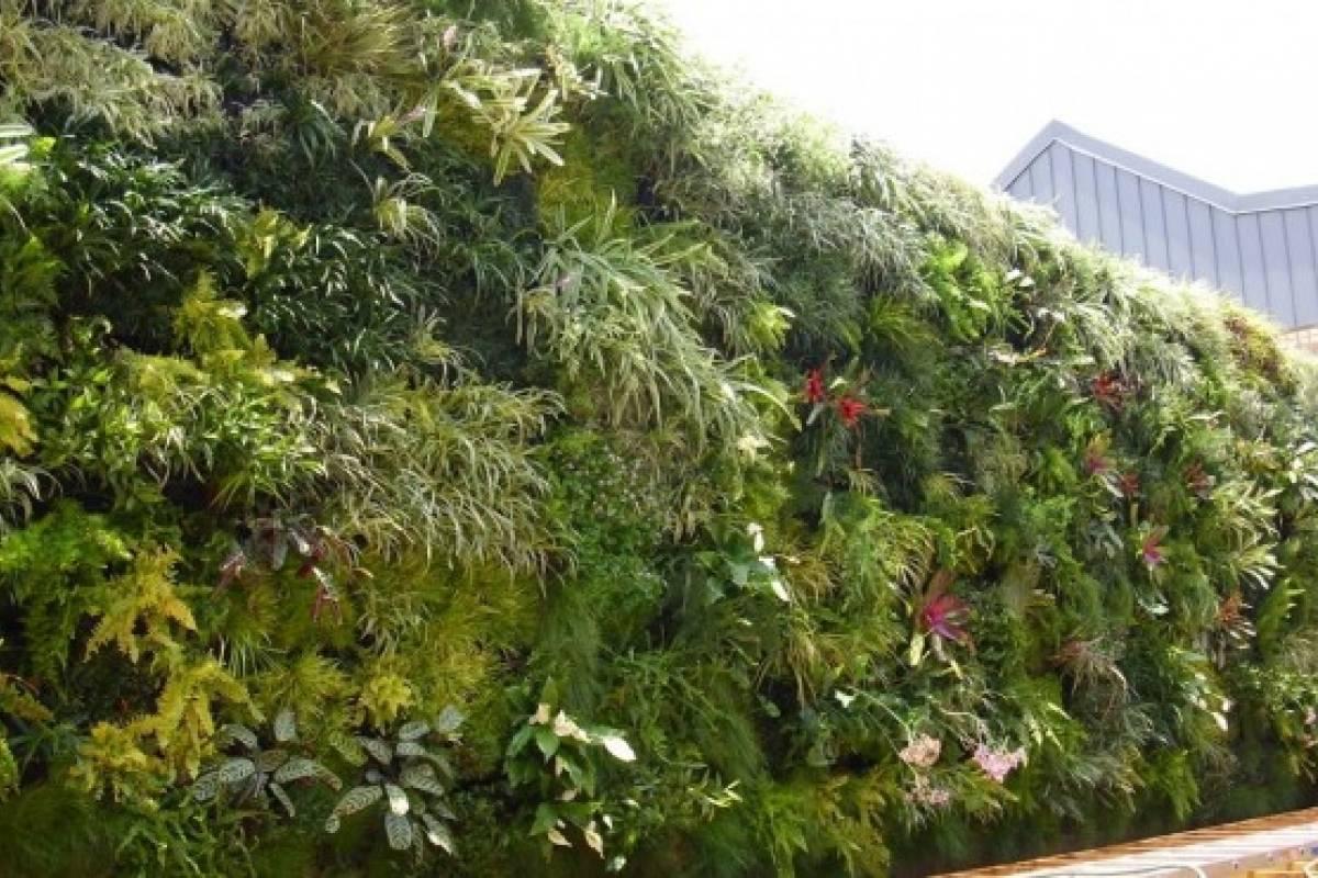 Jardines verticales descontaminantes llegan a chile for Jardines verdes verticales