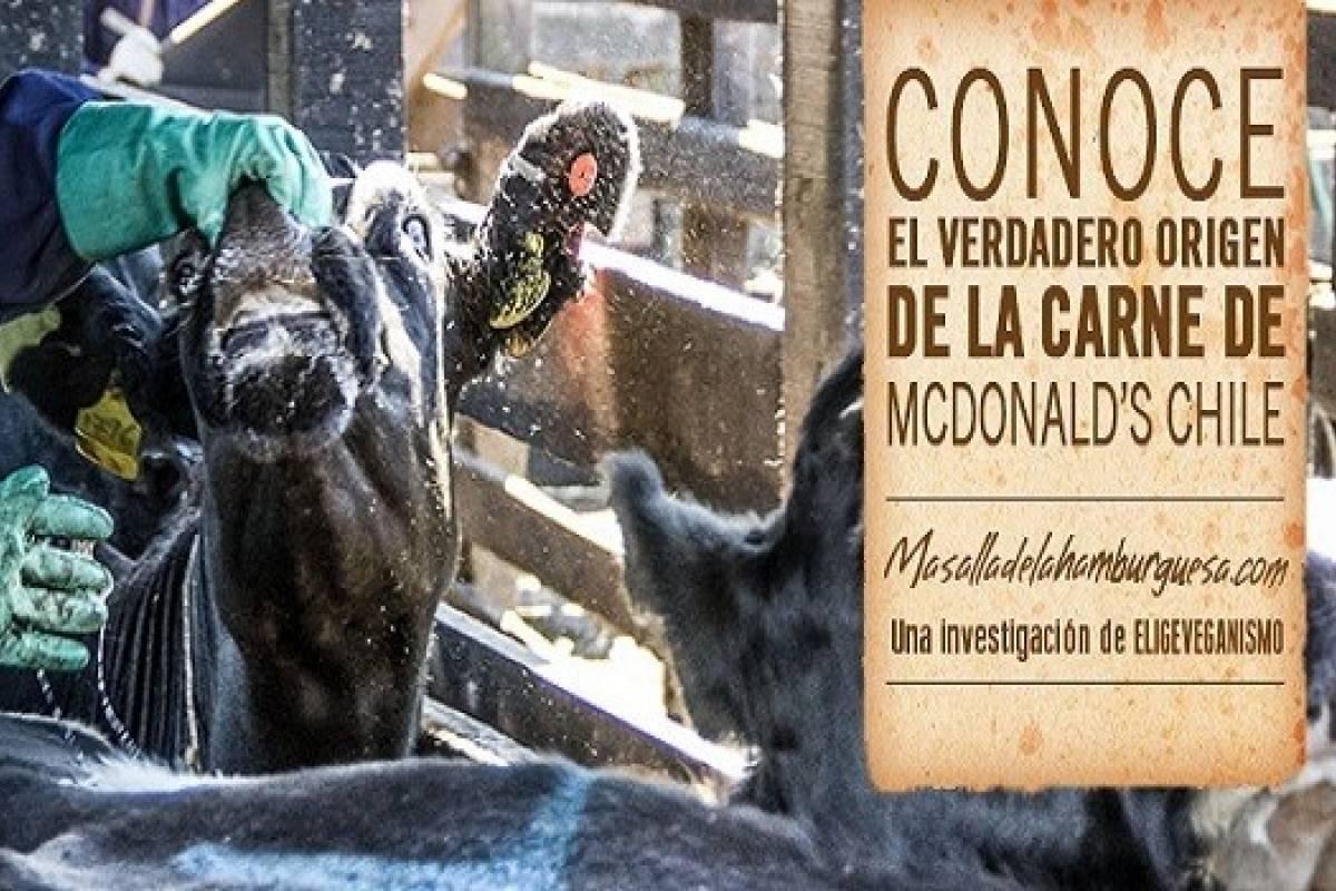 Mcdonalds sorprendido haciendo publicidad enga osa en for Haciendo el amor en la cocina