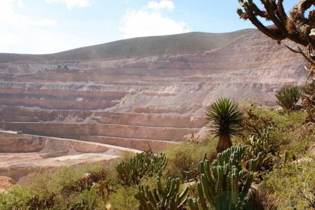 Chile apuesta por plantas que descontaminan zonas mineras