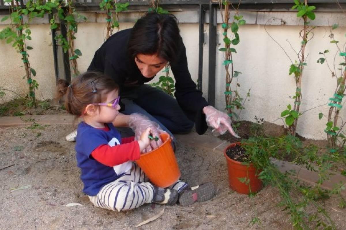 Aprende a hacer un plaguicida para tu jardín con ingredientes naturales