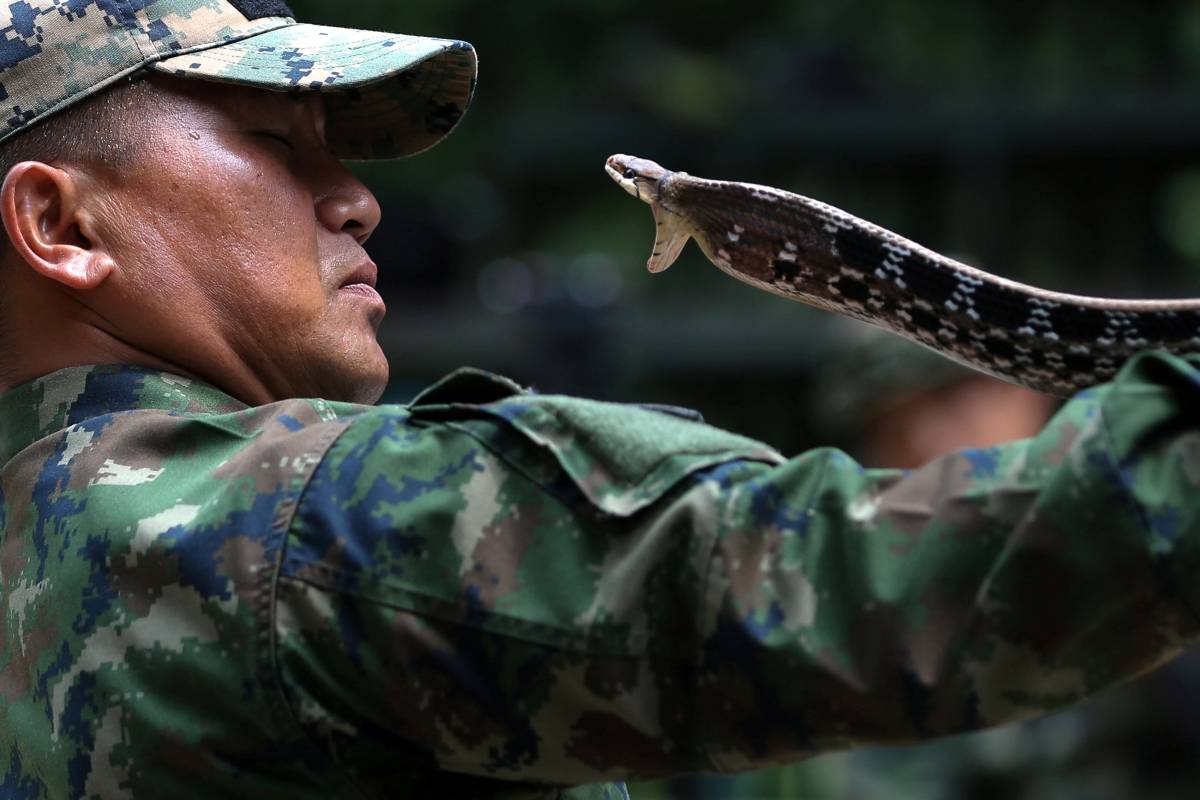 Athit Perawongmetha/Reuters