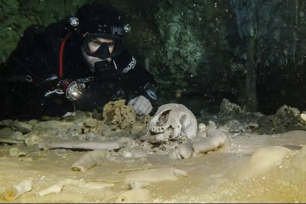 """El sistema de cavernas Sac Actun, cuyo mapa se realizó en fecha reciente, """"es probablemente el sitio arqueológico inundado más importante en el mundo"""" pero está amenazado por la contaminación,"""
