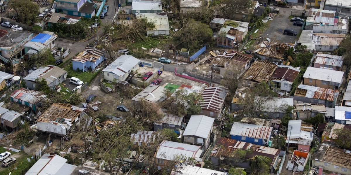Ofrecerán conferencia sobre huracanes y sus efectos en los bosques