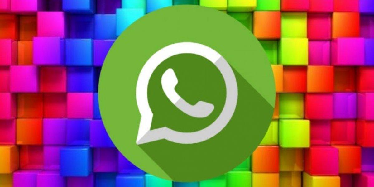 WhatsApp: veja todas as novidades que estão para chegar