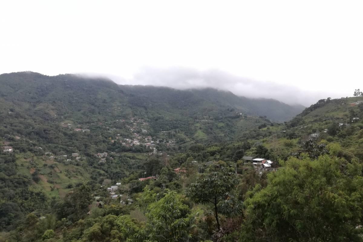 En la tarde, el paisaje se empieza a cubrir con la neblina. Foto: Lina Uribe