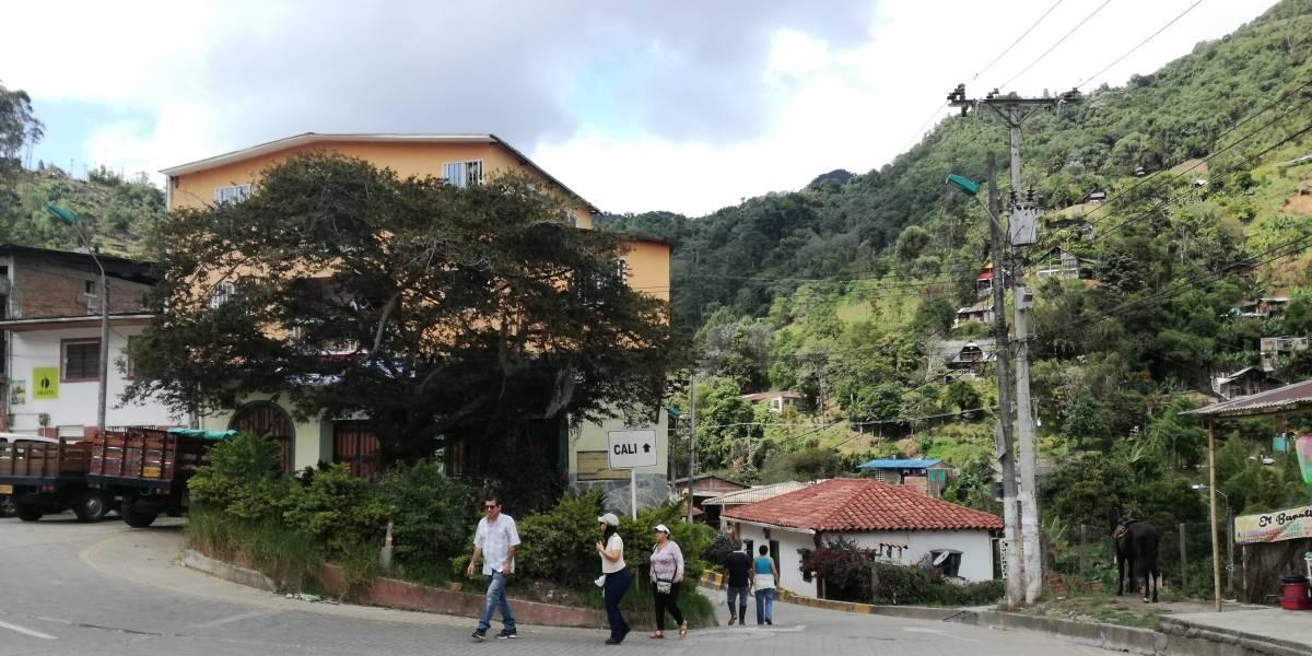 Felidia, viaje a un paraíso en medio de la montaña