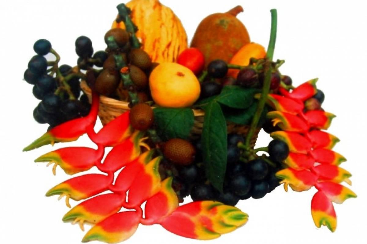 Conoce los frutos originarios del Amazonas gracias a un interesante ...