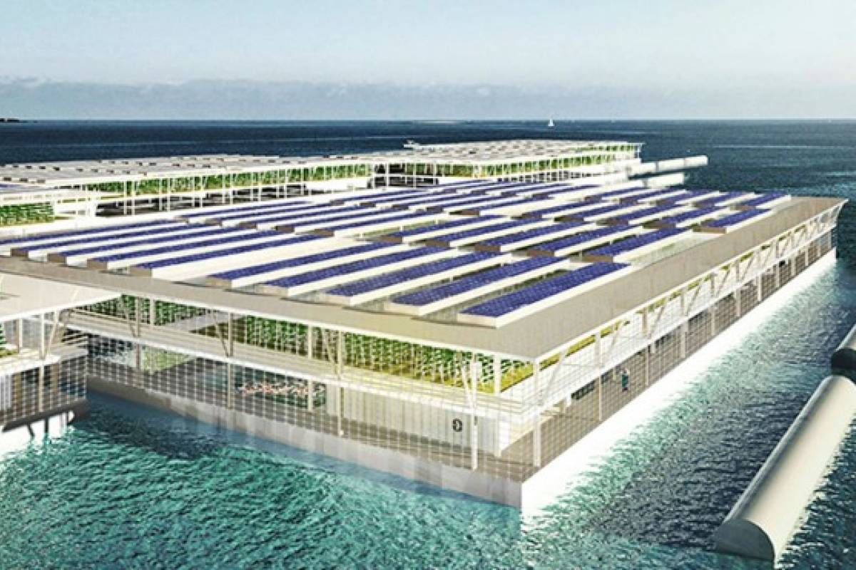 Granjas inteligentes flotantes podrían ser el futuro de la producción de alimentos