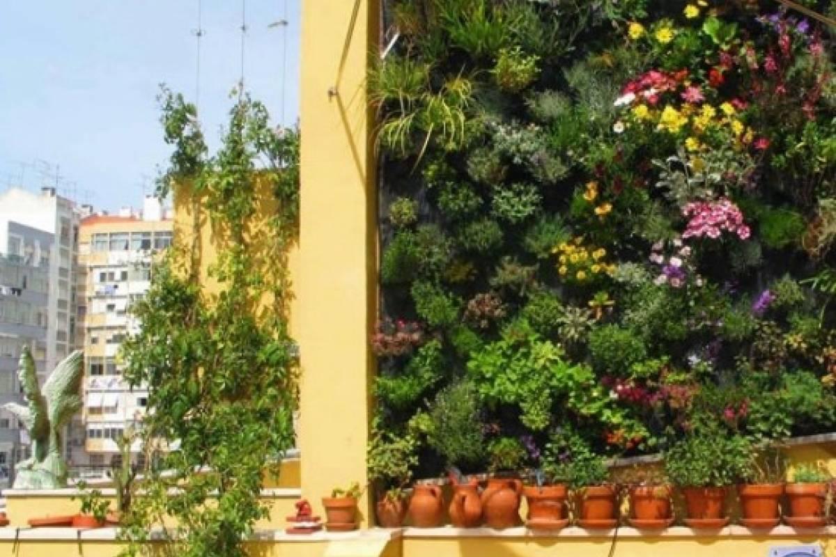 Jardines Verticales Una Tendencia En Alza Veoverde