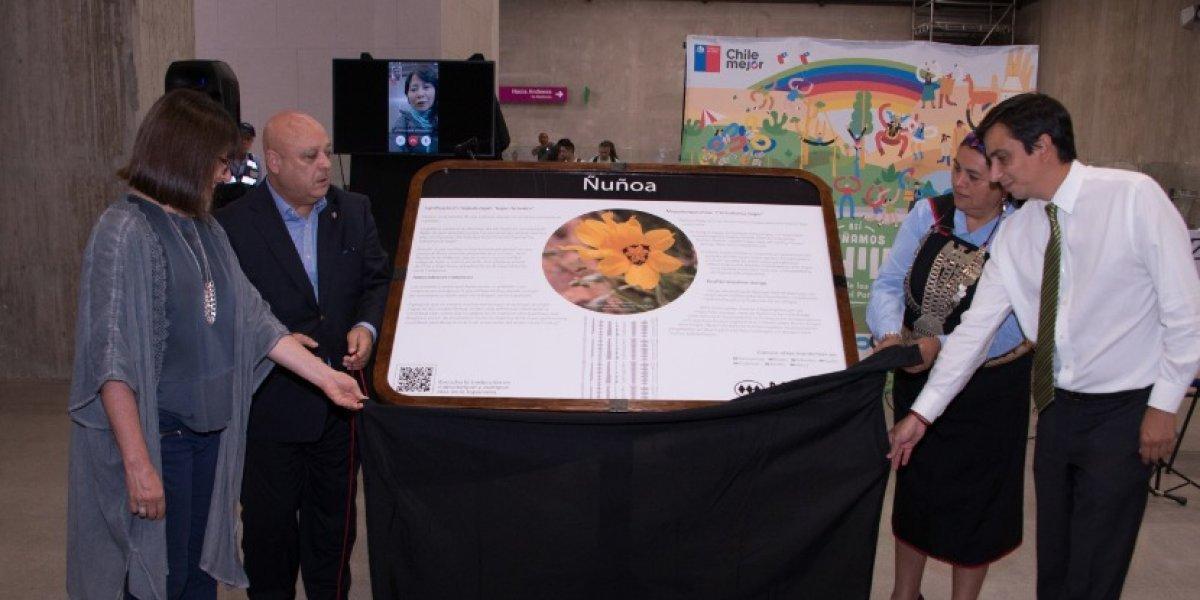 Tren con destino al rescate originario: Metro instala pantallas para educar sobre nombres con raíces aborígenes de sus estaciones