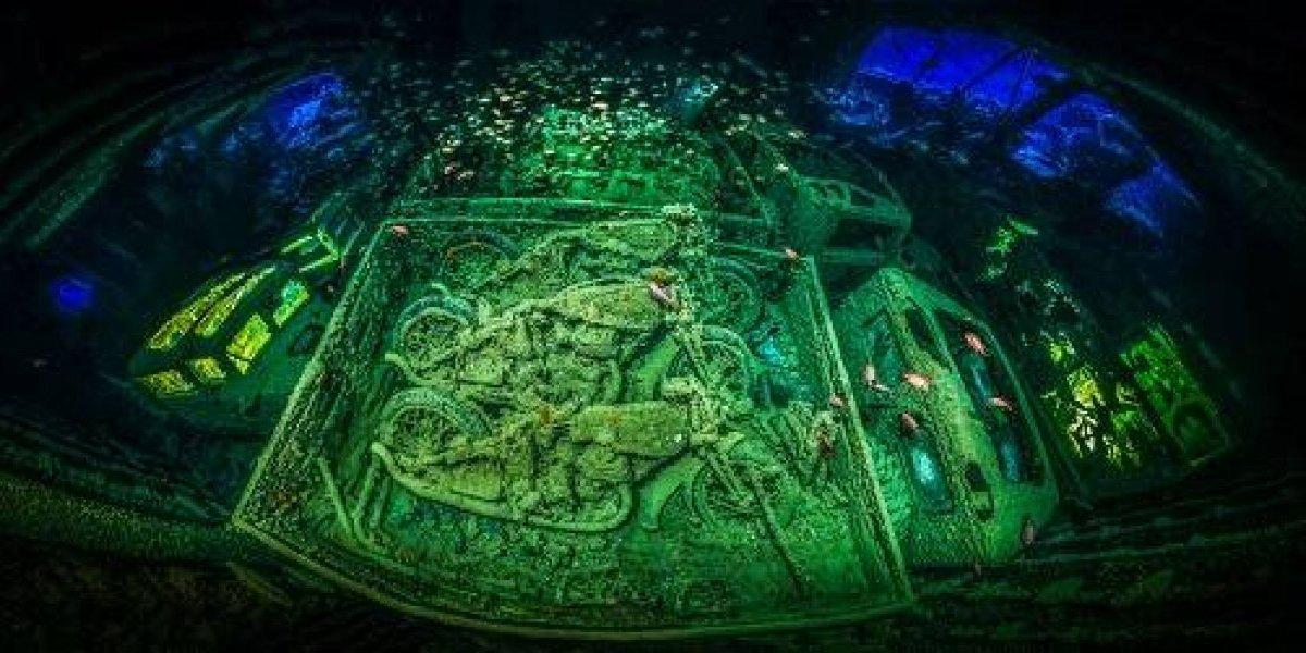 2018 y sus mejores fotos acuáticas