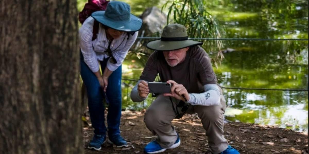 El avistamiento de aves, un atractivo del Jardín Botánico de Medellín