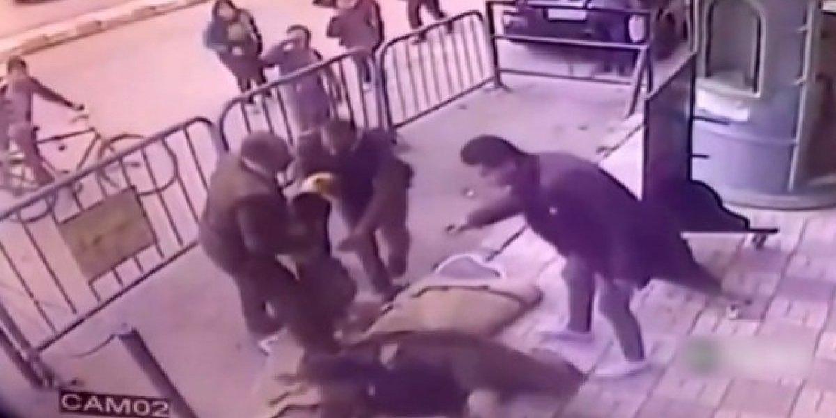 Policial salva criança no exato momento em que caía de um prédio; veja