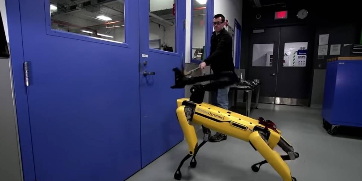 Ojalá no sea vengativo: el perro-robot de Boston Dynamics que atemoriza a las redes sociales evoluciona y ahora pelea con humanos