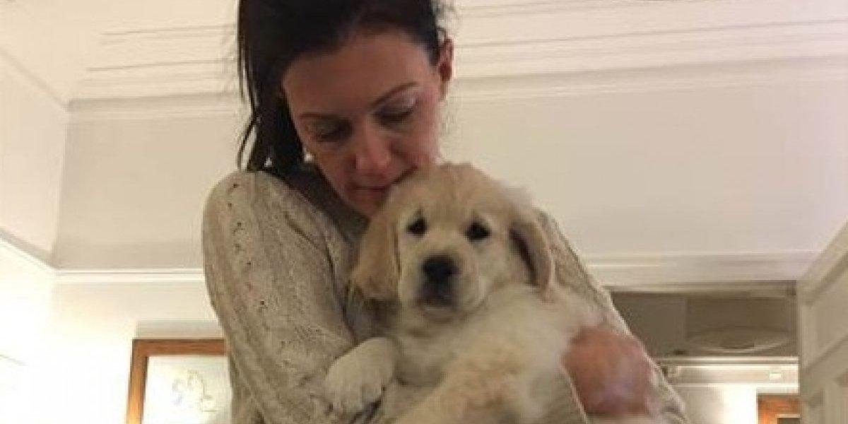 Tanto amor en un papel: profesora recibió el mejor regalo de sus alumnos mientras sufría por la muerte de su cachorro