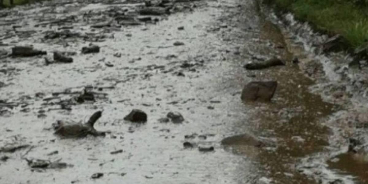 La vía Calacalí – Río Blanco está nuevamente habilitada