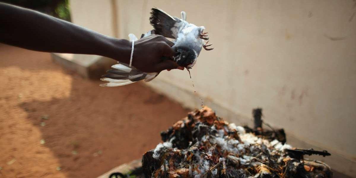 """Desbarataron red de tráfico de mujeres nigerianas: las obligaban a """"iniciarse"""" con rituales vudú-yuyú"""