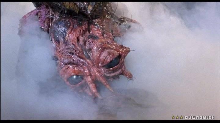 A MOSCA (1987) - O cientista Seth Brundle testa uma máquina de teletransporte de matéria e inadvertidamente permite que uma mosca entre na câmara junto com ele. Quando se dá a reintegração, o DNA de Seth funde com o do inseto, dando início a uma perigosa mutação genética. Venceu o Oscar de Melhor Maquiagem. Reprodução/Studio