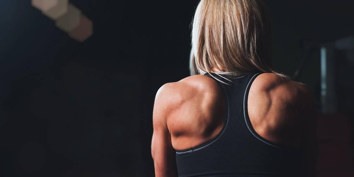 Hipertrofia: saiba como ganhar massa muscular