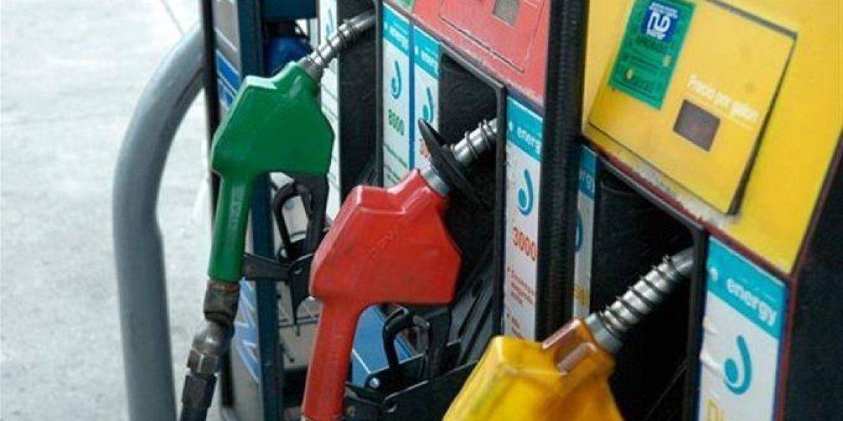 Precios de los combustibles continúan congelados