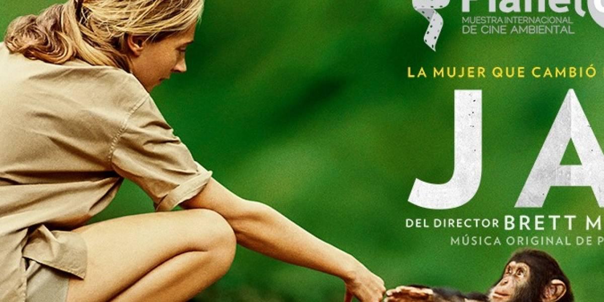 National Geographic presentará el documental 'Jane' en homenaje a la científica Jane Goodall