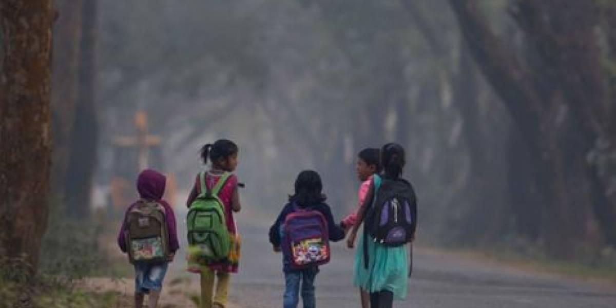 Mueren nueve niños al ser atropellados mientras salían de la escuela