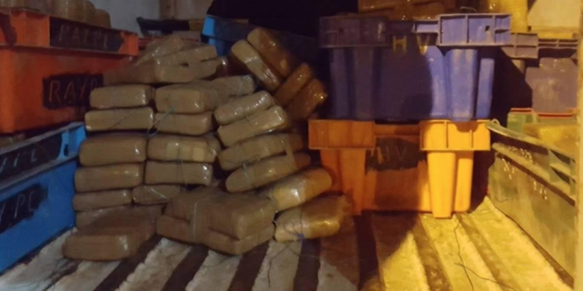 Decomisan en Ecuador 420 bloques de marihuana