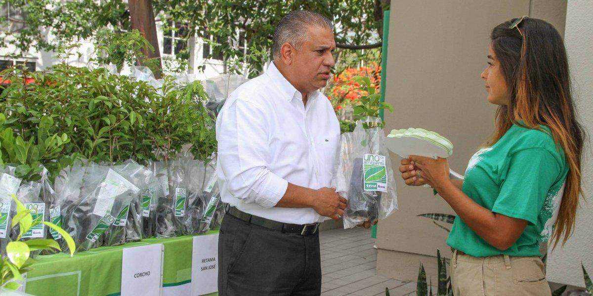 FirstBank regalará 2,200 árboles en la octava edición de Crece Verde