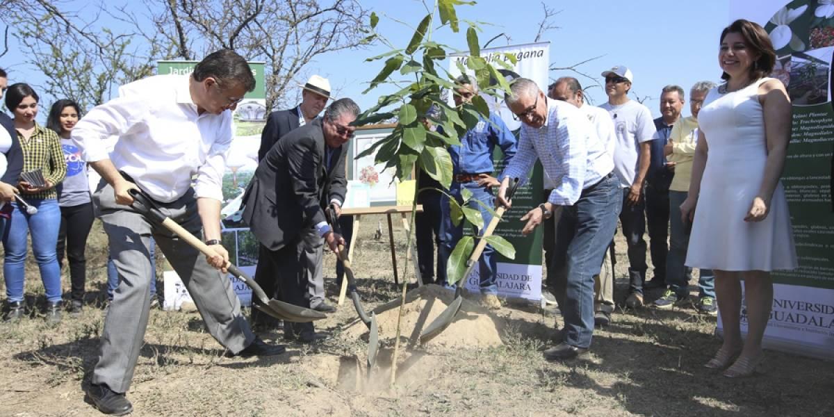 Colocan primera planta de jardín botánico en Guadalajara