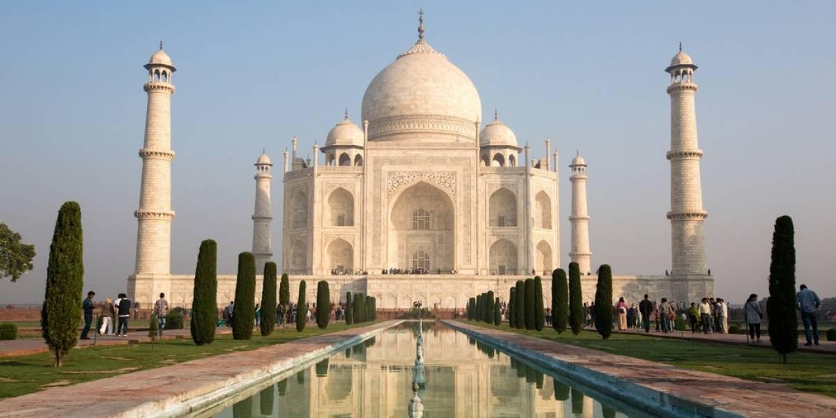 Fezes de insetos 'tingem' Taj Mahal de verde
