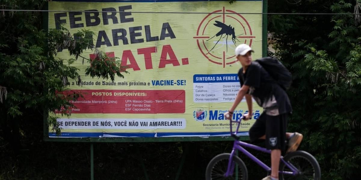 Estado do Rio tem 190 casos de febre amarela este ano