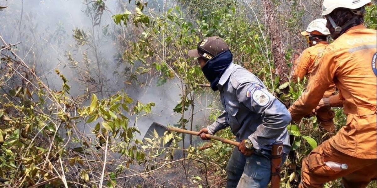 Autoridades controlan en un 85 % incendio en sierra de La Macarena