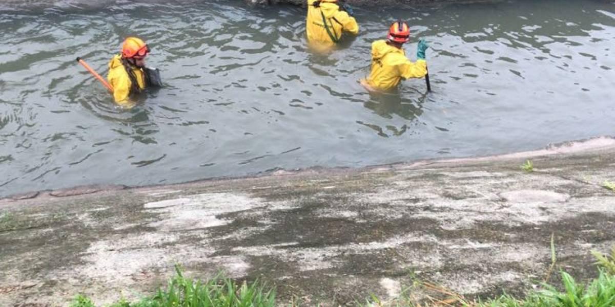Bombeiros retomam buscas por menino de 9 anos que desapareceu em enchente