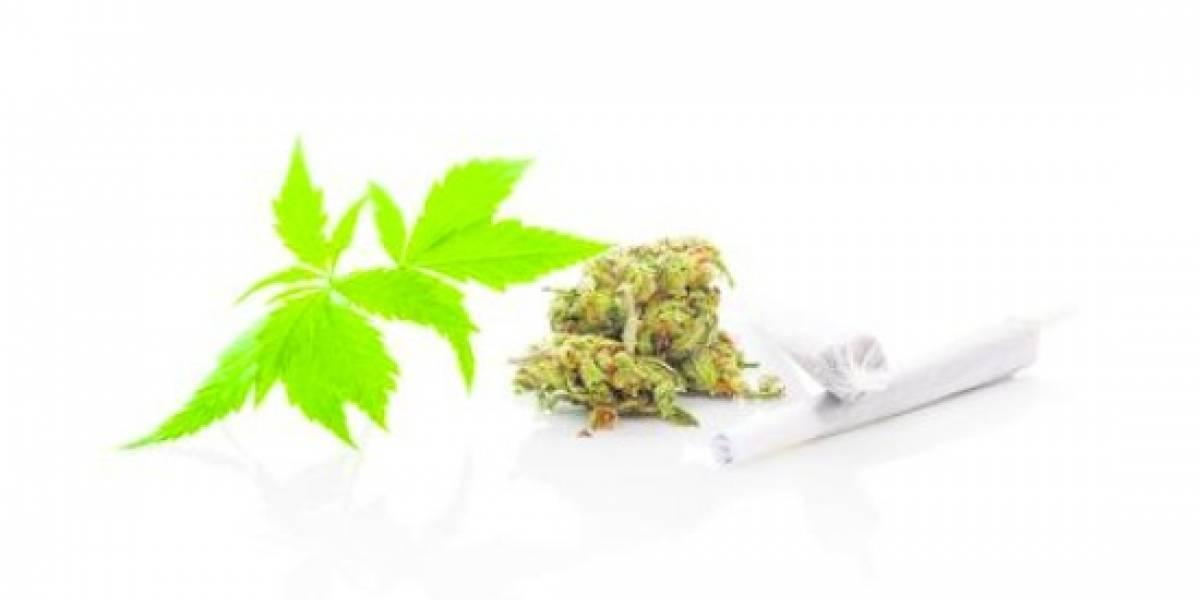 """""""La adicción al cannabis es real"""""""