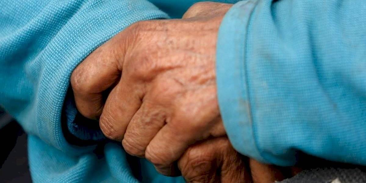 Una iniciativa digna de imitar: comuna de Graneros inaugura transporte público totalmente gratuito para adultos mayores